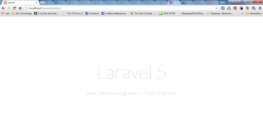 laravel-install-success